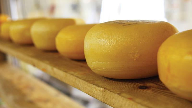 formaggio-2