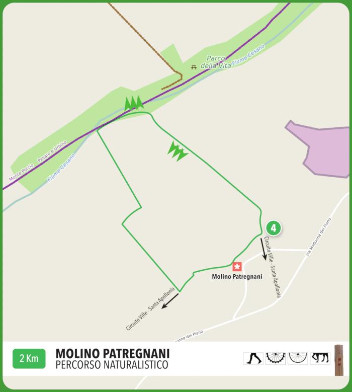 Perc-Molino